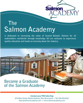 true north salmon the salmon academy brochure