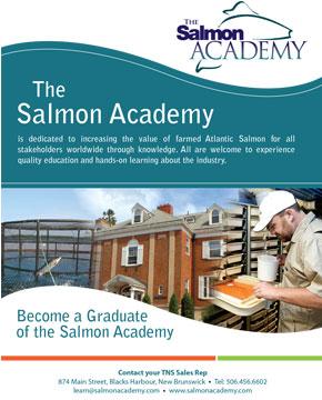 true north salmon the salmon academy brochure